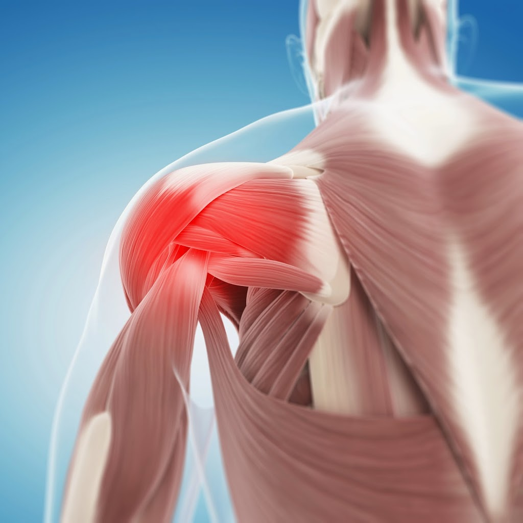 Cor Shoulder Pain Solution Physical Therapy Personal