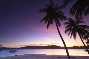 swim The Philippines,tropical beach