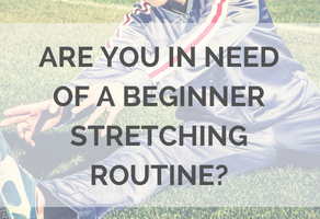 beginner stretching